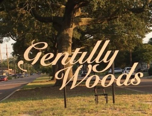 Gentilly Woods